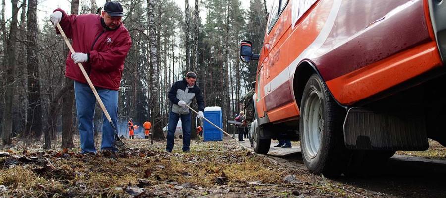 Генеральная уборка:лес почистили и стройку