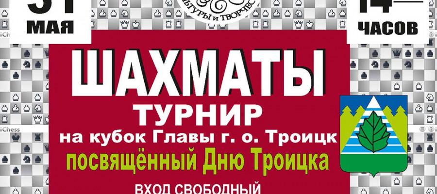 Шахматный турнир посвященный Дню города