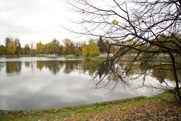 В московских парках будет работать лекторий «Здоровая Столица»