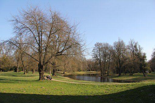 В Москве начнется благоустройство восьми крупных городских парков