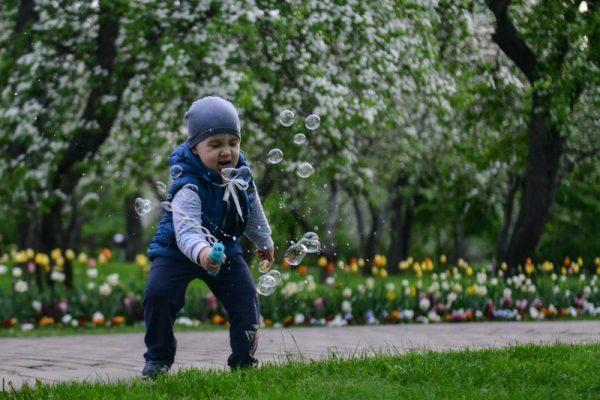 В парках Москвы от клещей обработали почти 1,5 тыс гектаров