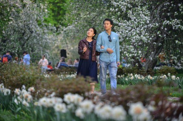 Москвичи выбрали победителей конкурса цветников фестиваля «Цветочный джем»