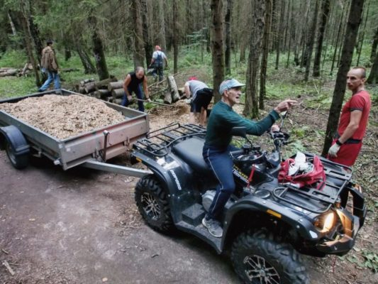 Помочь лесу