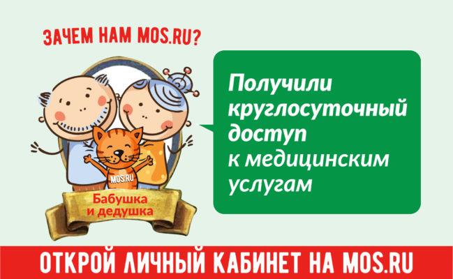 Пользователи портала мos.ru могут дистанционно вызвать ветеринара