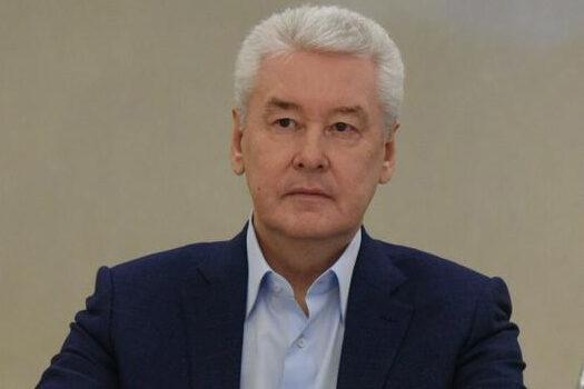 Собянин принял участие в онлайн-голосовании по поправкам в Конституцию