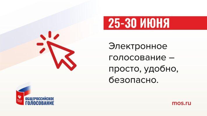 Дистанционный формат голосования по поправкам в Конституцию будет доступен гражданам