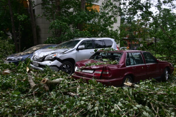 Депутат МГД Козлов рассказал о компенсации урона автомобилю от стихийного бедствия