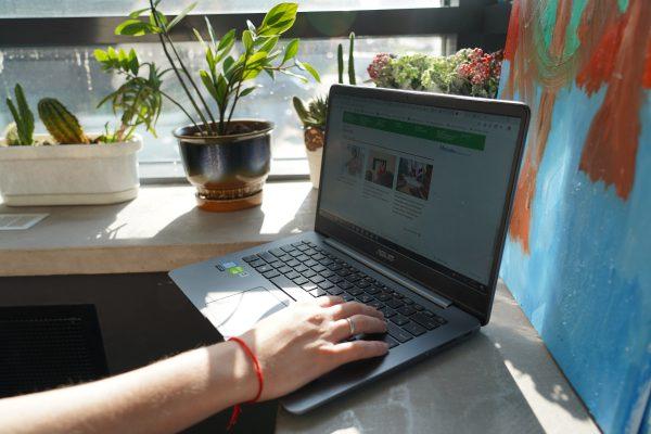 Регистрация на онлайн-голосование на mos.ru доступна на полюсе, в тайге и космосе